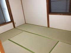 20111129-144008.jpg